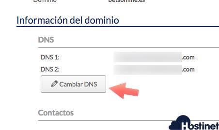 cambiar dns dominio hostinet desde fichar de cliente