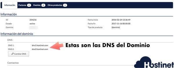 Estas son las DNS a las que apunta un dominio
