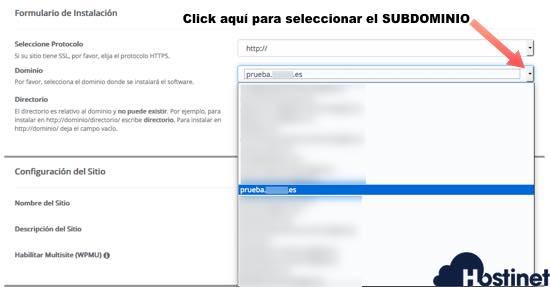 Buscar subdominio donde instalar el CMS con Softaculous