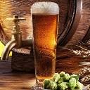 dominios beer news
