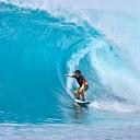 dominios surf news