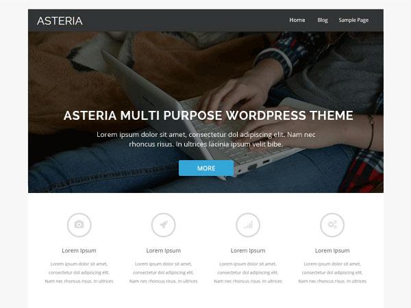 AsteriaLITE theme