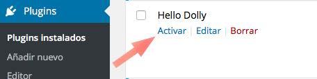 activar plugin en WordPress