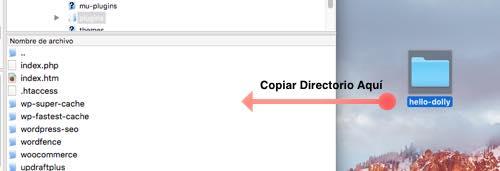 copiar directorio descomprimido