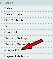 Magento Sales Google API