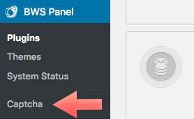 bws panel wordpress