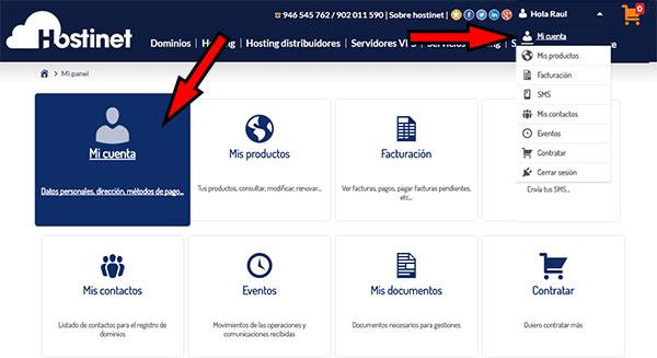 Area de usuario de Hostinet - Mi Cuenta (nuevo logo 2016)