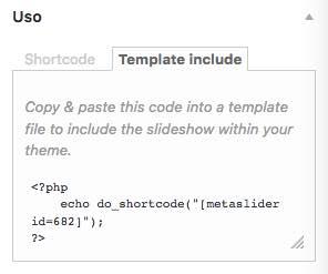 template include meta slider