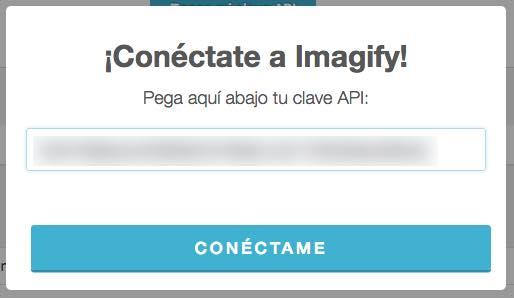 ingresa key imagify wordpress