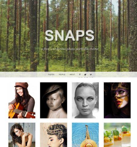 snaps theme wordpress