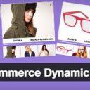 Dynamic Gallery wordpress mini