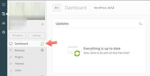 actualizar dasboard managewp WordPress