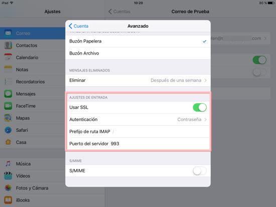 ajustes de entrada iPad