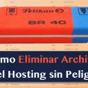 Cómo Eliminar Archivos del Hosting sin Peligro
