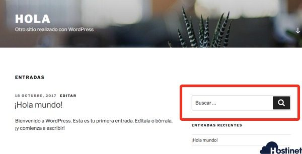 widget buscar sitio web en WordPress