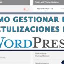Cómo Gestionar las Actualizaciones en WordPress con Easy Updates Manager