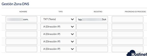 registro txt dominio desde hostinet.com