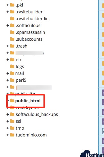 plublic_html arbol cPanel