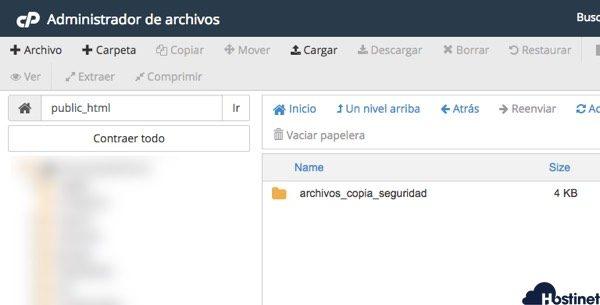 public vacio en Administrador de Archivos