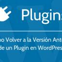 Cómo Volver a la Versión Anterior de un Plugin de WordPress