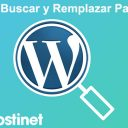 Cómo Buscar y Remplazar Palabras en WordPress