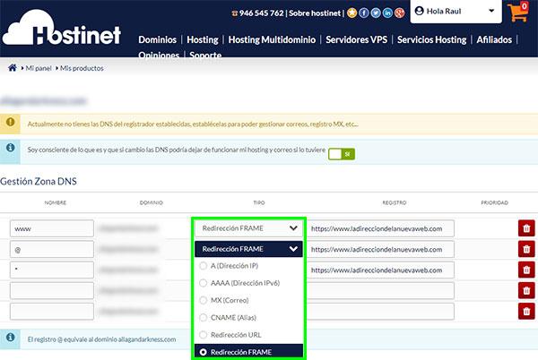 Hostinet Mis Productos Gestionar Zona DNS Registros Dominios Genéricos Frame