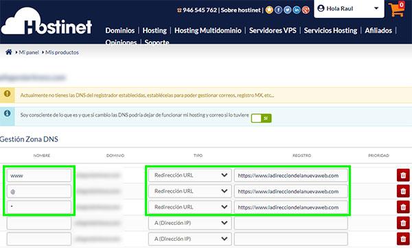 Hostinet Mis Productos Gestionar Zona DNS Registros Dominios Genéricos