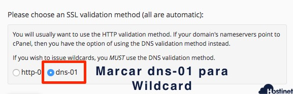 validacion dns ssl wildcard en cPanel. - Hostinet