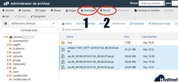 descargar y eliminar backups softaculous desde Administrador de Archivos