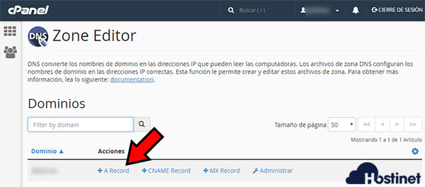 cPanel Zone Editor A Record