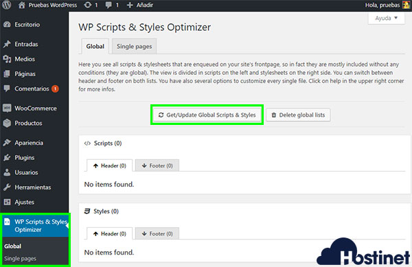 WP Scripts & Styles Optimizer Global
