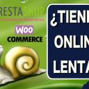 6 Motivos por los que tu Tienda Online Puede ser Lenta