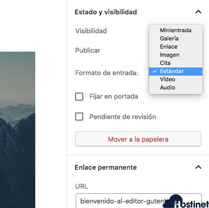 opciones documento gutenberg WordPress