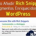 Cómo Añadir Rich Snippets (Fragmentos Enriquecidos) en WordPress