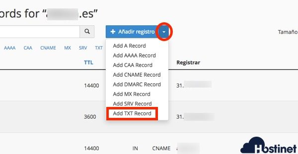 anadir txt record en cPanel