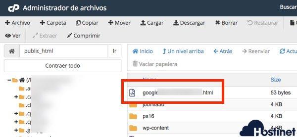 archivo search console subido cPanel