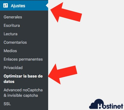 optimizar base datos revisiones WordPress