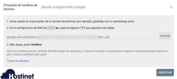 verificar search console registro txt