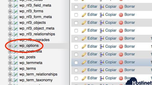 wp options phpmyadmin wordpress