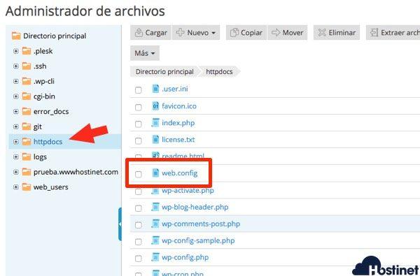 archivo web Plesk