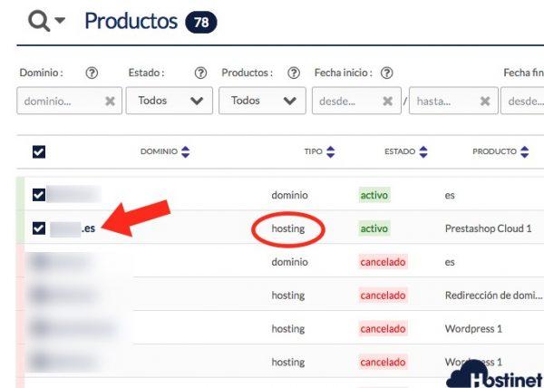 gestion hosting planel cliente - Hostinet.com