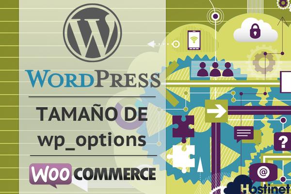 Cómo Solucionar y Evitar que wp_options Aumente de Tamaño en WordPress