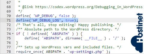 wp-debug log
