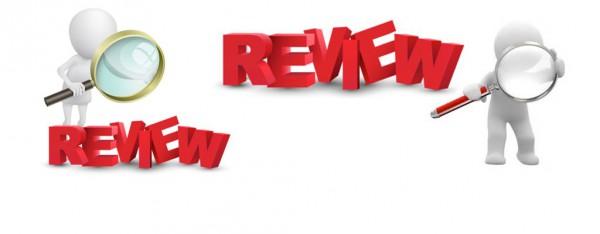.review dominios