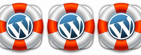 Hosting WordPress con Soporte Especializado en Hostinet