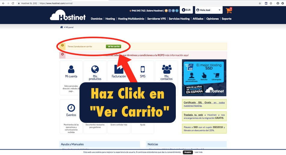pagina principal hostinet carrito - Hostinet.com