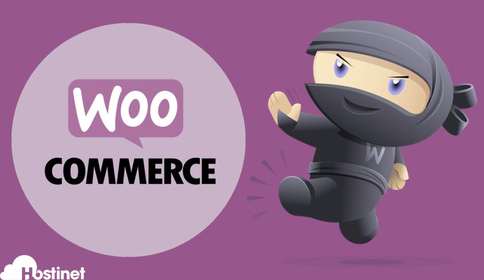 El Mejor Hosting Posible para tu Tienda Online WooCommerce